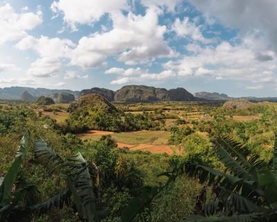 Vegetation Kuba