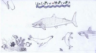 Unterwasserwelt Mexikos