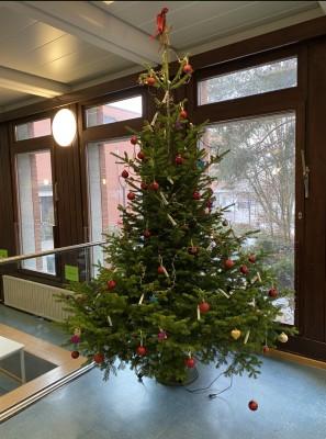 Weihnachtsbaum_2020